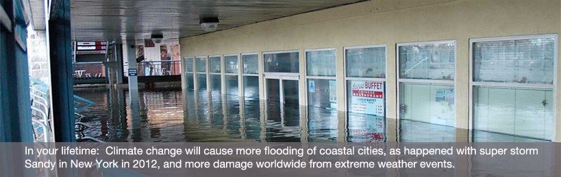 Extreme Storms and Floods